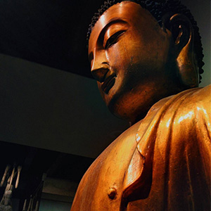 picture of a Buddha